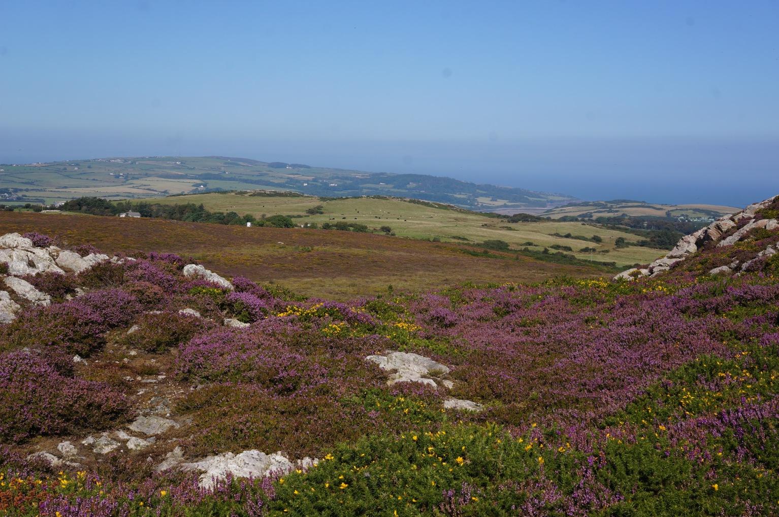 Anglesey.jpg