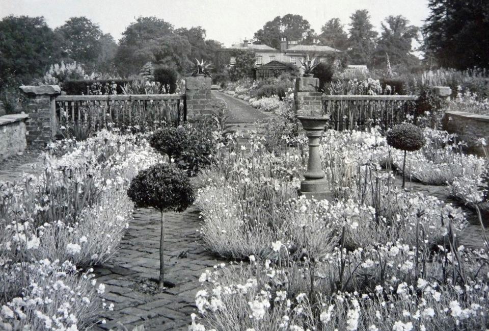 Hagley-Park (1)