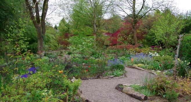 Picton Garden, early spring