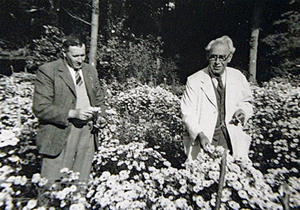 Percy Picton and Ernest Ballard 1950