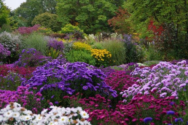 The Picton Garden