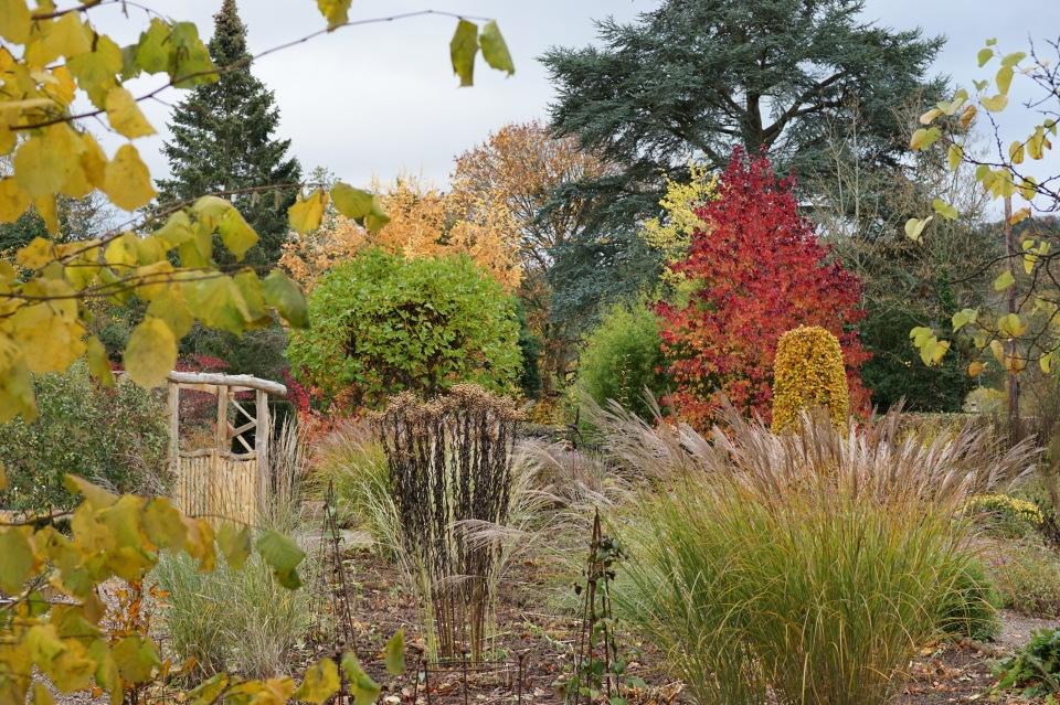 Picton Garden 5