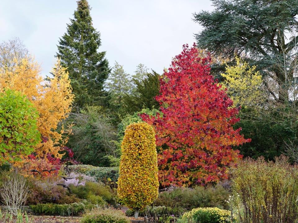 Picton Garden 6 Nov